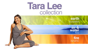 Tara Lee Collection